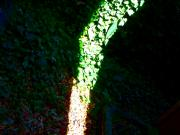 Light And Shadow Photos - Backyard Sunbolt 3 by Chuck Taylor