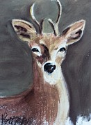 Deer Pastels - Backyard Visitor by Kathleen Hartman