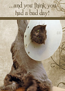 Blue Cat Posters - Bad Day Poster by Joann Vitali