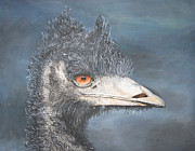 Emu Paintings - Bad Hair Day by John Hebb