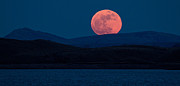 Supermoon Photos - Bad Moon Rising by Sandy Sisti