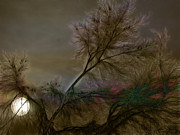 Stuart Turnbull - Bad moon rising