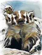 Oil Painting Posters - Badger - Guardian of the South Poster by J W Baker