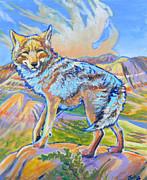 Jenn Cunningham - Badland coyote