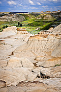 Geology Prints - Badlands in Alberta Print by Elena Elisseeva