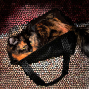 Kitty Digital Art - Bag Kitty by Nilla Haluska