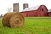 Farm Building Prints - Bail and Barn Print by Douglas Barnett