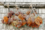 Sheds Photos - Bait Bags by John Greim