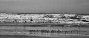 Chuck Kuhn - Baja Coast II