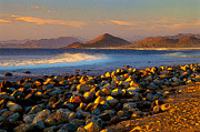 Baja California Sur Prints - Baja Rocky Beach Print by Vance Fox