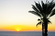 John Greaves Prints - Baja Sunrise Print by John  Greaves