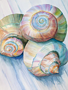 Seashells Paintings - Balance in Spirals Watercolor Painting by Michelle Wiarda