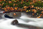 Skate Photo Metal Prints - Balance of the Seasons Metal Print by Mike  Dawson