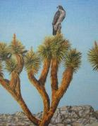 Eagles Drawings - Balance by Rebecca Steelman