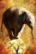 Mammals Digital Art Prints - Balance Print by Trudi Simmonds
