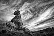 Southwest Sky Metal Prints - Balanced Rock in Black and White Metal Print by Gary Zuercher