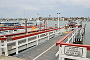 Balboa Island Framed Prints - Balboa Island Ferry Framed Print by Heidi Smith