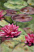 Mary McCullah - Balboa Water Lilies