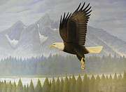 Falcon Mixed Media - Bald Eagle 28 by Alan Suliber