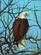 Equine Commissions Framed Prints - Bald Eagle Alert Framed Print by Mary Singer
