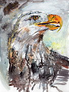 Watercolor And Ink Paintings - Bald Eagle by Ginette Fine Art LLC Ginette Callaway