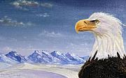 Hector E Soto - Bald Eagle in Alaska