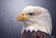 American Eagle Paintings - Bald Eagle by Jennifer Hickey