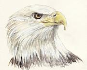 Bald Eagle Print by Morgan Fitzsimons