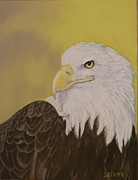 Patriotism Pastels Posters - Bald Eagle Poster by Robert Decker