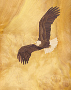 Eagle Mixed Media - Bald Eagle Wood Art by Vincent Doan