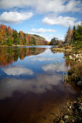 Evergreen Trees Photo Posters - Bald Mountain Pond in the Adirondacks Poster by David Patterson