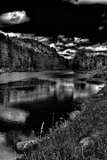 Fir Trees Photos - Bald Mountain Pond VI by David Patterson