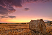 Bulgaria Prints - Bales At Twilight Print by Evgeni Dinev