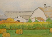 Cornfield Originals - Baling Season  by Sarah Tule