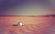 Tilt Shift Posters - Ball At Beach Poster by Alberto Cassani