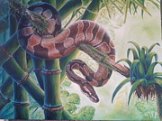Ross Daniel Paintings - Ball Python by Ross Daniel