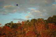 Pumpkin Digital Art Originals - Ballon over Burning Trees by Michael Thomas