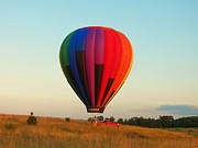 Hot Air Balloon Photos - Balloon in Field by Joyce L Kimble