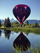 Festivals Posters - Balloon Reflection Poster by Leland Howard