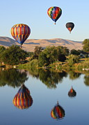 Yakima Valley Photo Framed Prints - Balloons over Horse Heaven Framed Print by Carol Groenen