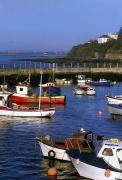 Stood Photos - Ballycotton, Co Cork, Ireland Harbour by The Irish Image Collection
