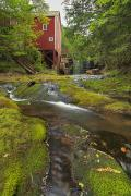 Grist Mill Prints - Balmoral Grist Mill In Balmoral Mills Print by Darwin Wiggett