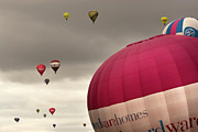 Balloon Fiesta Prints - Baloons Print by Angel  Tarantella