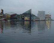 Baltimore Harbor Reflection Print by Carol Groenen