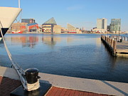 Water Reflections Pyrography - Baltimore Harbor by Valia Bradshaw