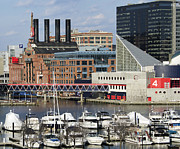 Inner Harbor Photos - Baltimore Maryland - Inner Harbor by Brendan Reals