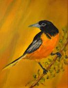 Oriole Originals - Baltimore Oriole by James Higgins