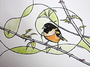 Oriole Mixed Media Prints - Baltimore Oriole Print by Kate Zamarchi