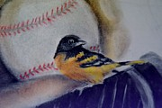 Baseball Art Pastels Framed Prints - Baltimore Orioles Framed Print by AE Hansen