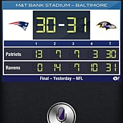 Sports Art - Baltimore! Ravens Nation Baby!  by Brittany Hoffman